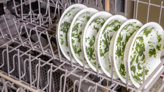 Maldon and Burnham Standard: It's hard for your dishwasher to remove dried-on food—and spinach is the worst. If you can't run a full normal cycle right away, at least start a rinse cycle. Credit: Reviewed / Jonathan Chan