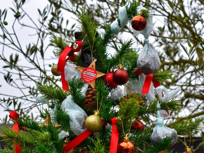 Christmas tree decorated with dog poo bags to highlight town's messy problem
