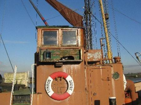 The ship's cat has a sleep in the autumn sun on the Hythe, Maldon, taken by Freddy Brooks.