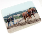 Maldon and Burnham Standard: Glass Chopping Board