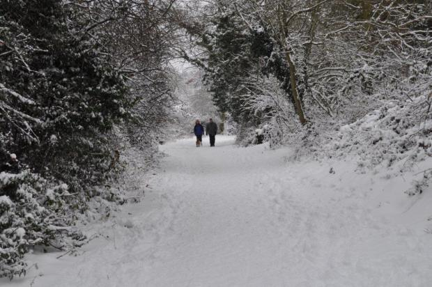 Braintree: Snow shuts schools and causes travel problems