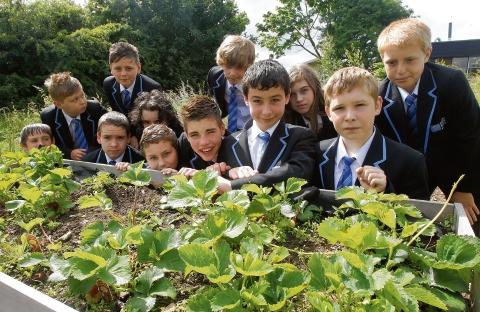 Ormiston Rivers Academy pupils show off their award-winning strawberry bed