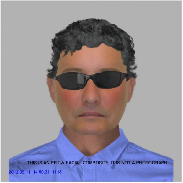 Efit of man who tried to grab girl in Great Totham. Police appeal for help with investigation. Call 101 if you have any information.