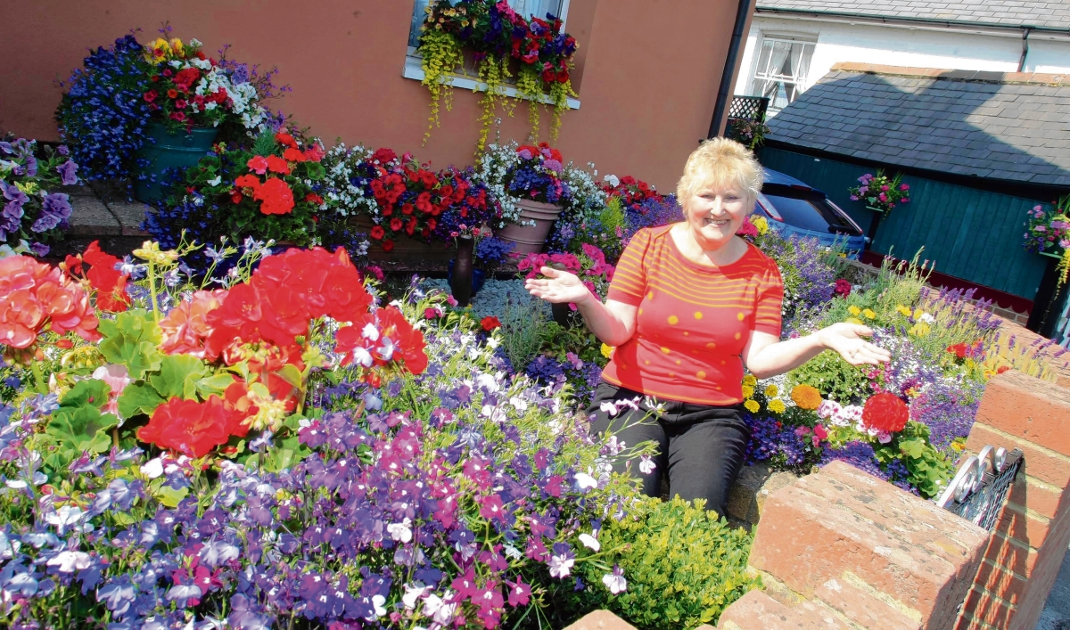 A previous winner of Maldon in Bloom