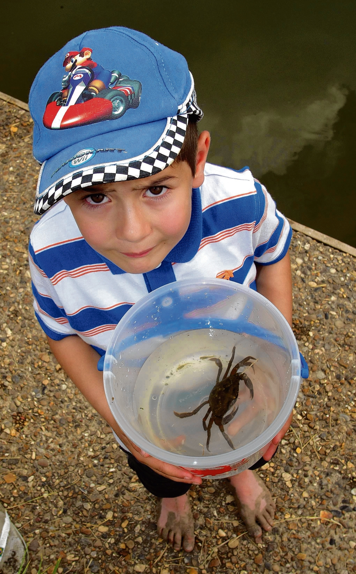 A crabbing competition will be taking place during Burnham's Quay Day on Bank Holiday Monday.
