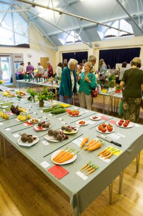 Halstead's horticultural show this weekend
