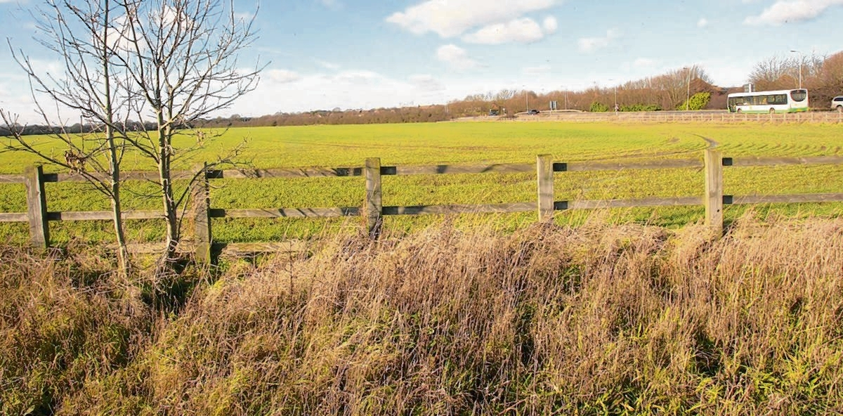 The land earmarked for development