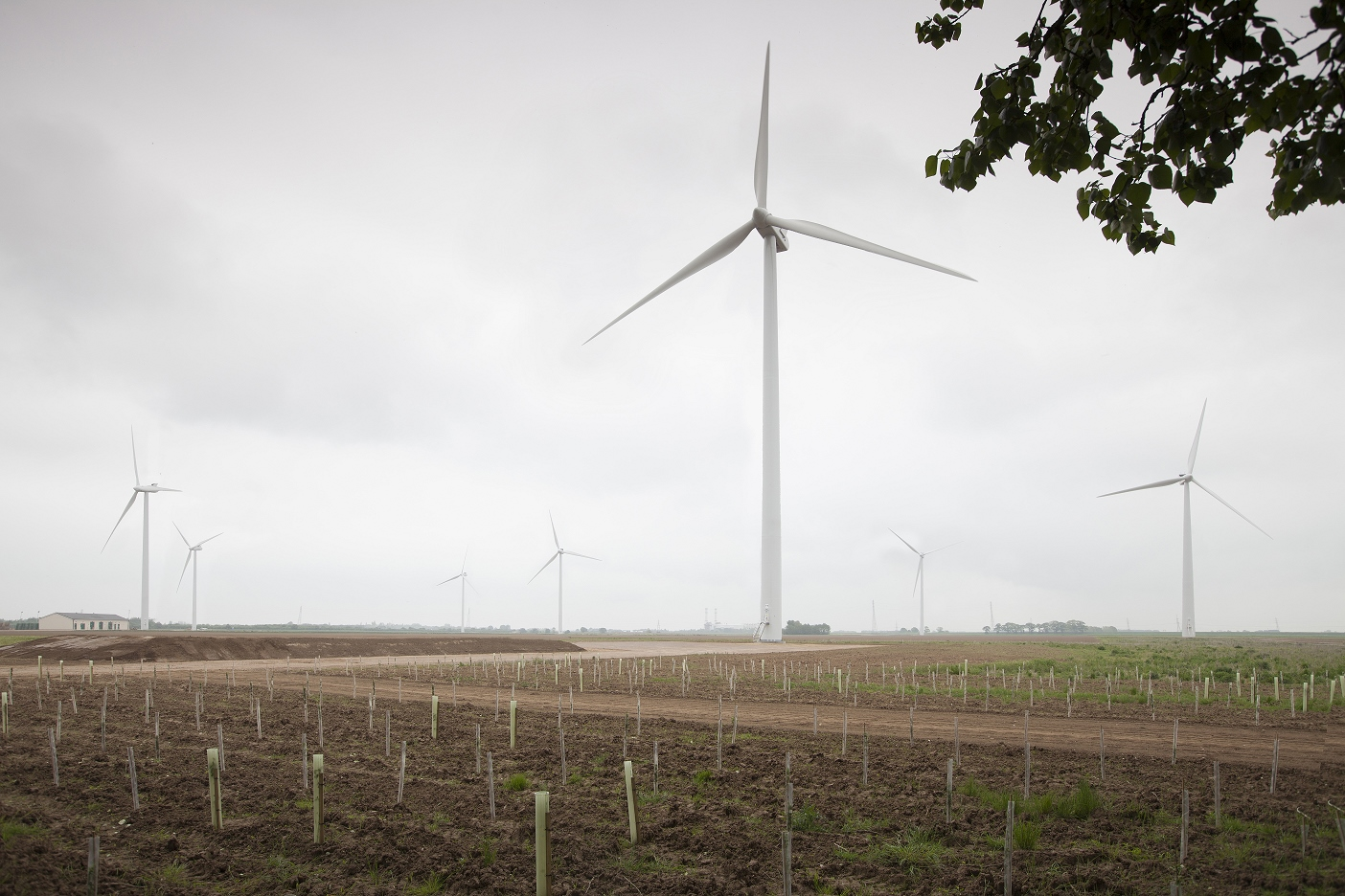 The Grange Wind Farm in Lincolnshire, which has seven turbines of similar height to those that will be installed at Turncole Farm. Photo by Chris Whitehead.