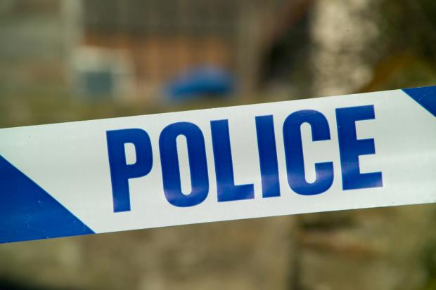 Woman suffers head injuries following