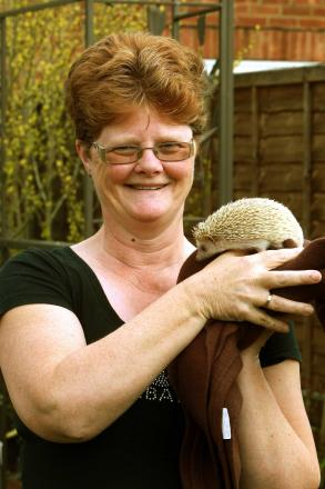 Owner lesley Steel with Twiglet the hedgehog