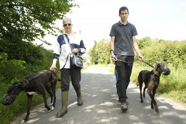 Volunteers Chris Jones and Shaun Spoore walking two of rescue dogs