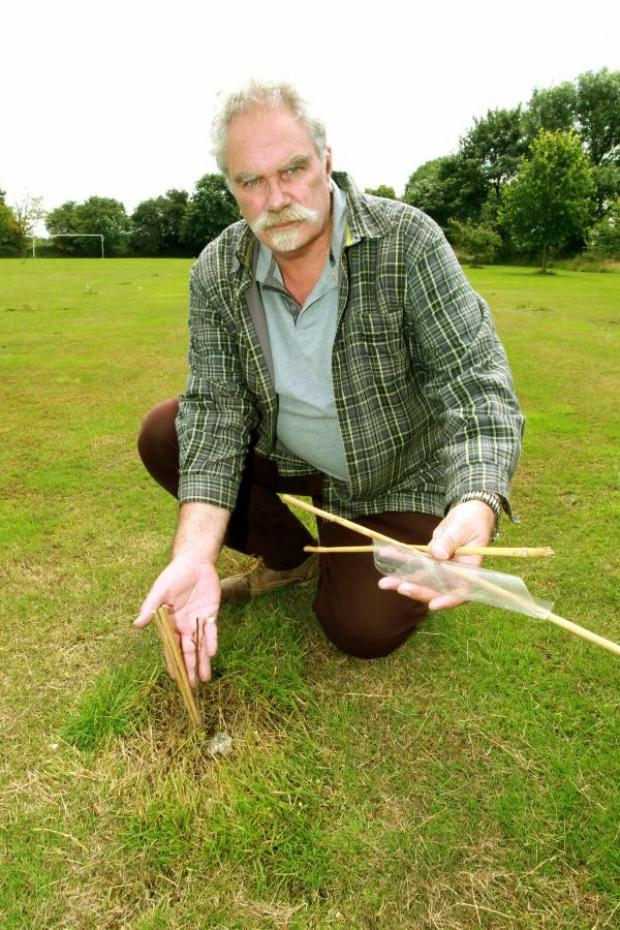 Maldon and Burnham Standard: Steve Tachauer with the remains of destroyed saplings
