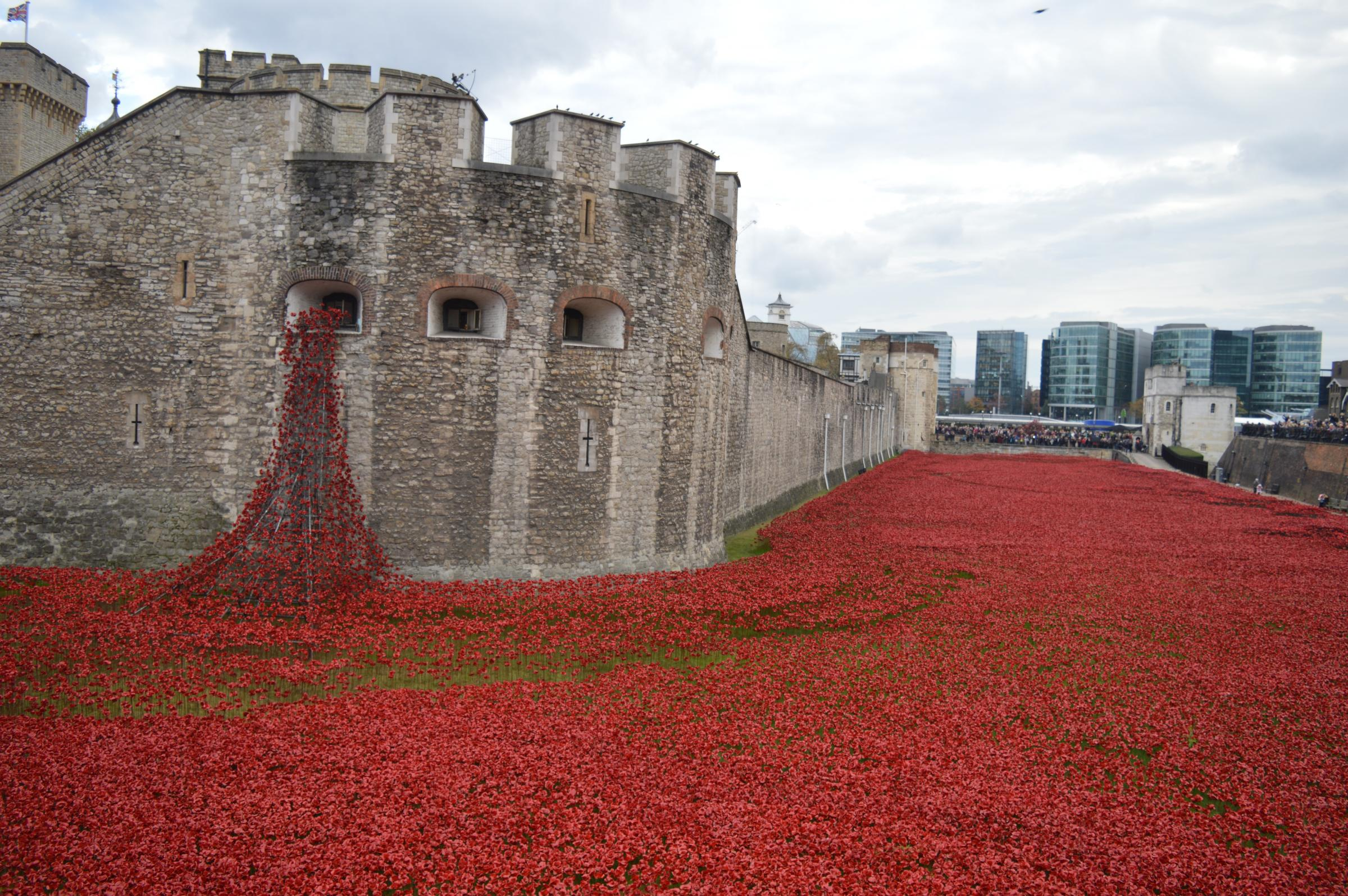 Google Images Tower of London Poppies Tower of London Poppies