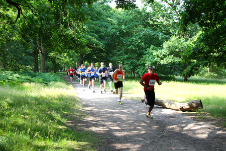 Essex Cross Country 10k Series - Danbury Park