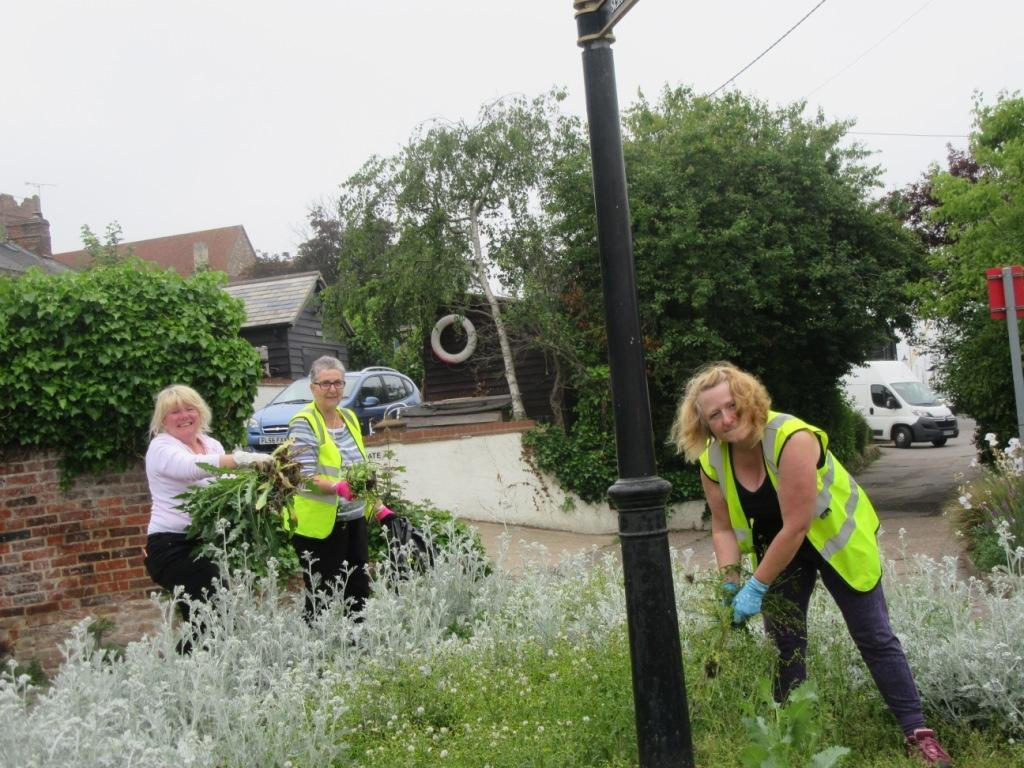 VOLUNTEERS: Weed spotters helping to clear away weeds from green areas around Maldon. The Anglia in Bloom judges arrive on Monday