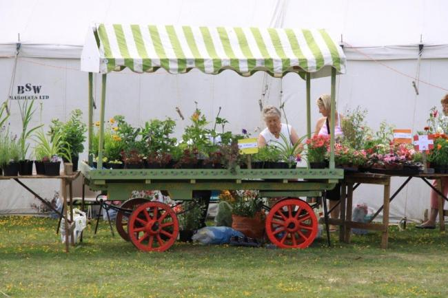FLOWER POWER: It's not too early to start preparing for Tolleshunt D'Arcy Flower Show, which will take place on July 6